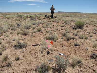 Petrified Forest National Park archaeology survey