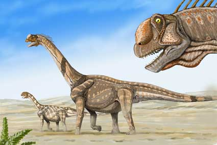 An artist's rendering shows a herd of Camarasaurus supremus. A prevalent genus of plant-eating dinosaur in North America during the Jurassic period, Camarasaurus may be an ancestral relative of a new sauropod species discovered in South Dakota. (Courtesy Dmitry Bogdanov)